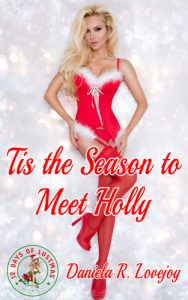 Tis the Season to Meet Holly cover